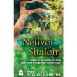Netivot Shalom