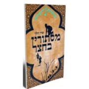 עלילות ירושלים 1-מסתורין בחצר