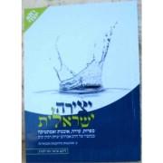 יצירה ישראלית